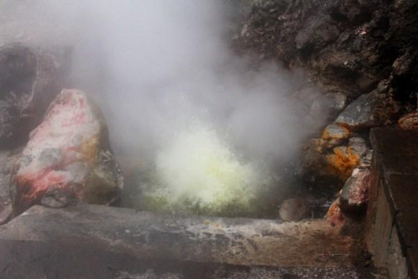 Caldera humeda en furnas sao miguel